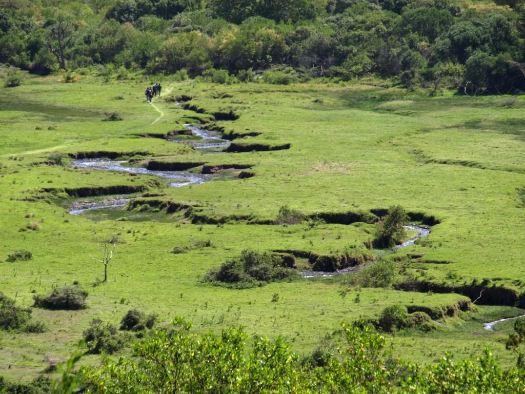 Panorámica del Parque Nacional de Arusha. Por Udare