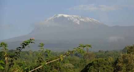 Vistas a Kilimanjaro antes de que las nubes cubran la cima. Por Udare