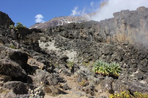 Ascenso de Kilimanjaro. Por Nuria B.