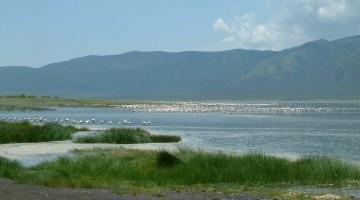Vista del Lago Bogoria. Wikipedia