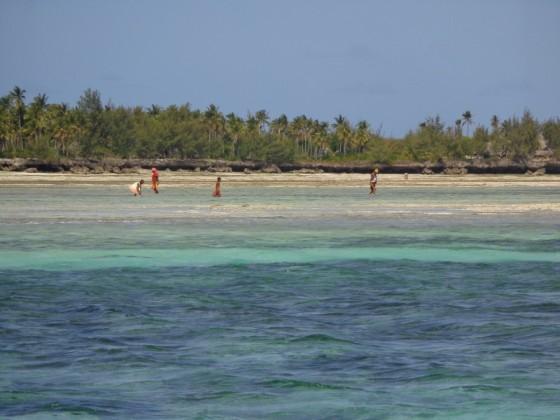 Zanzibar, un paraíso. Por Udare