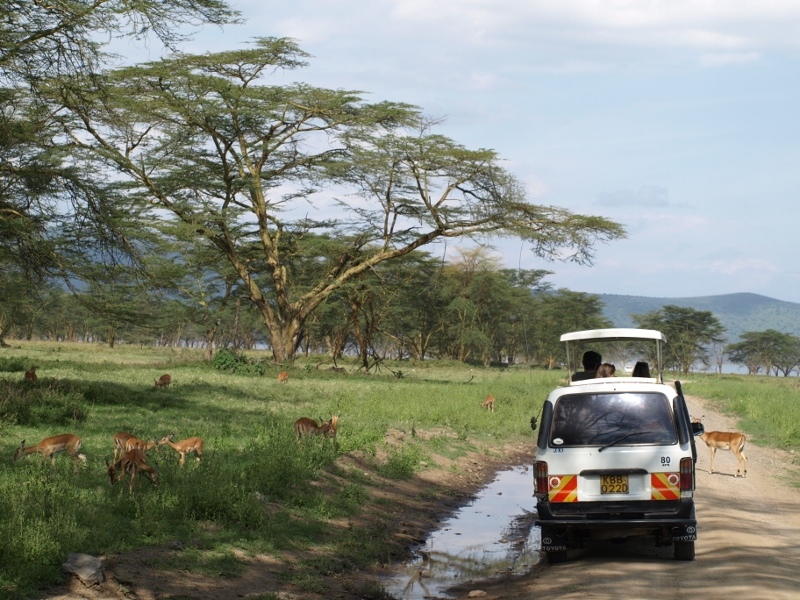 Viajeros en safari privado. Por Udare