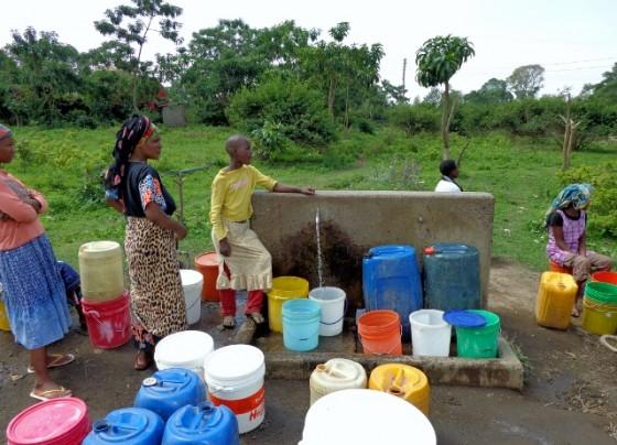 Abasteciéndose de agua. Por Udare
