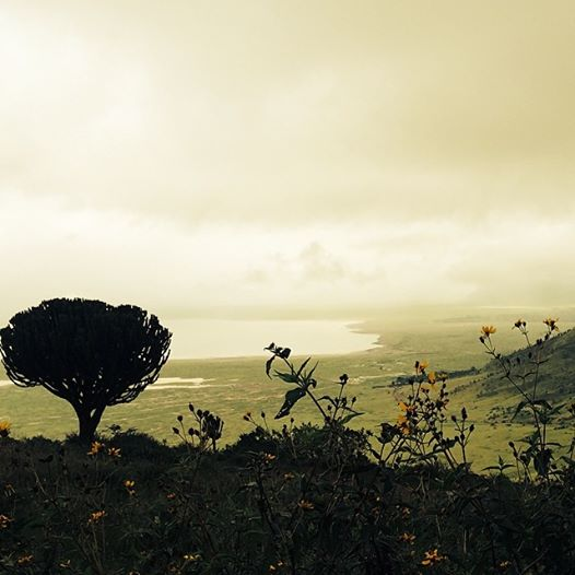 Panorámica del cráter de Ngorongoro. Por Leonor