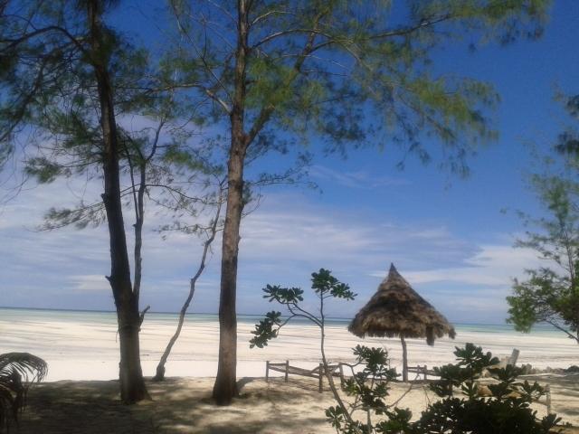 Desayunando en Zanzibar. Por Marga