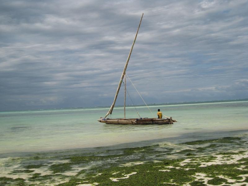 Paseando por Zanzibar. Por Sol M.