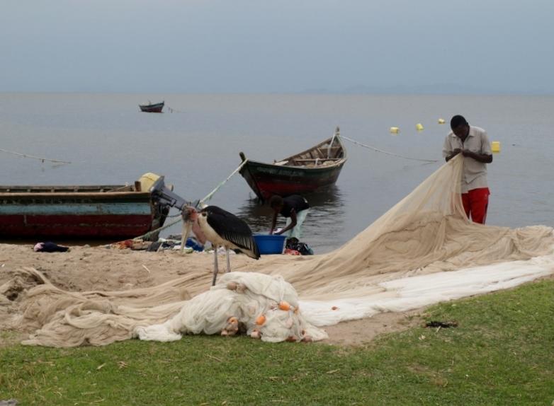 Ribera Lago Victoria. Por Udare