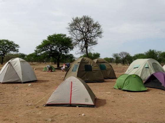 Camping público Seronera. Por Udare
