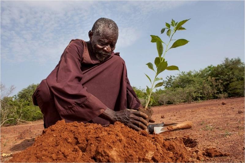 Yacouba Sawadogo creando un bosque. Por seguimosinformando.com