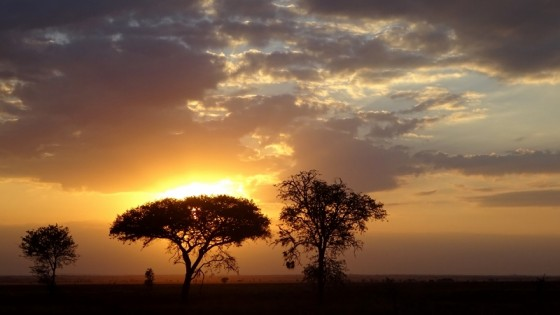 Atardecer en Serengeti. Por Miguel