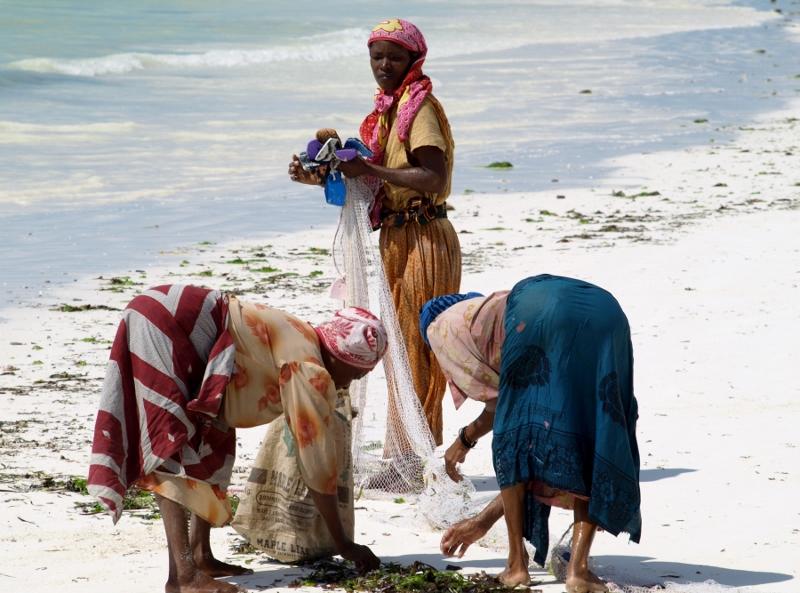 Mujeres pescando en Zanzibar. Por Udare