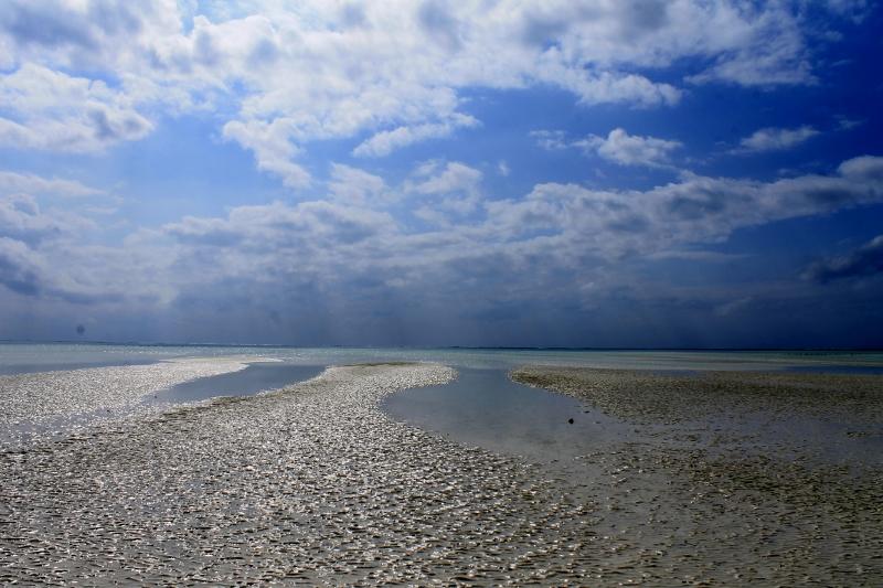 Zanzíbar, playa de Paje. Por Jacob
