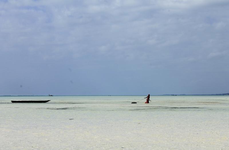 Zanzíbar, playa de Paje. Por Alba