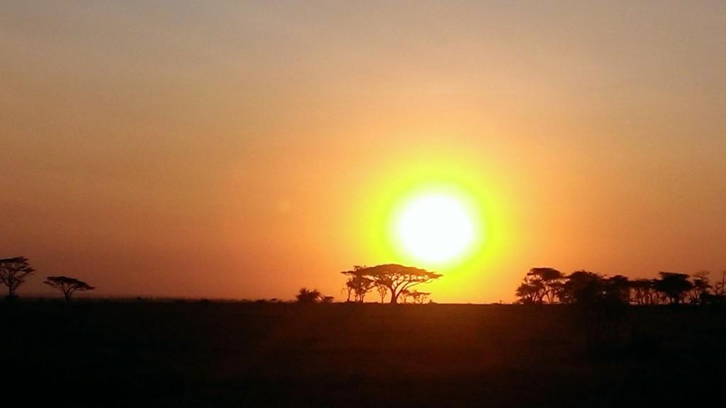 Puesta de sol en Serengeti. Por Javier.