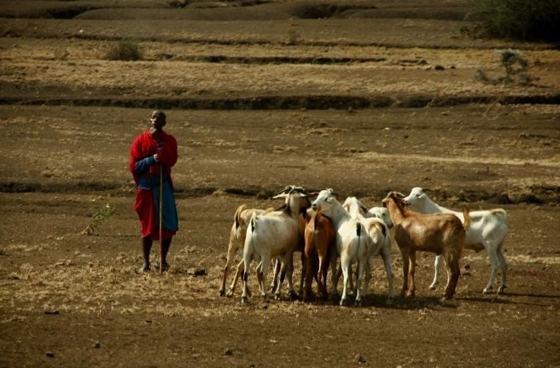 Pastores masai en el camino. Por Santiago