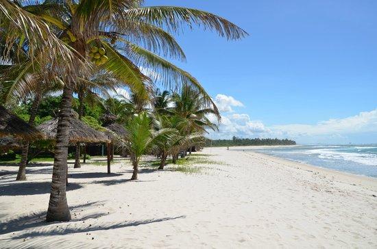 Diani Beach. Tripadvisor