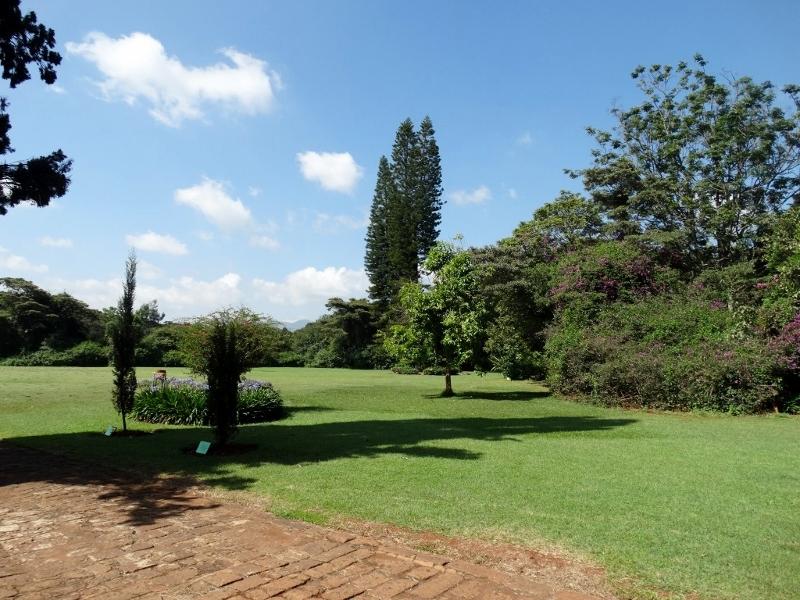 Jardines exteriores casa museo Karen Blixen, Memorias de África por Udare