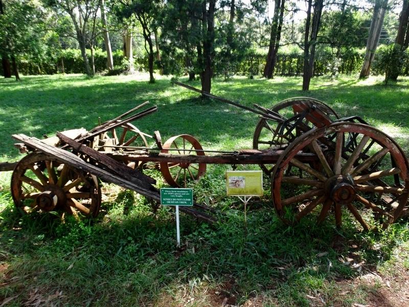 Herramienta original de Karen Blixen para cultivar la tierra por Udare