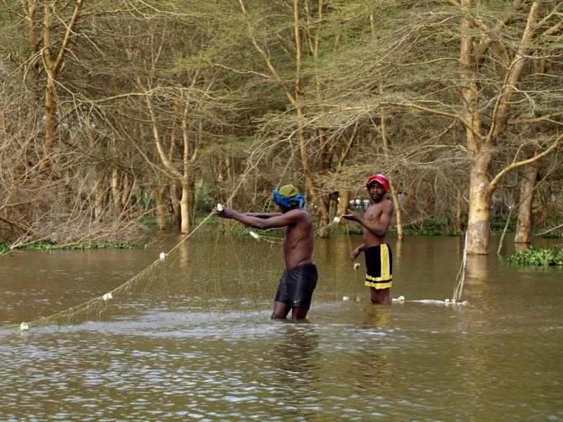 Pescadores en Lago Naivasha. Por Udare
