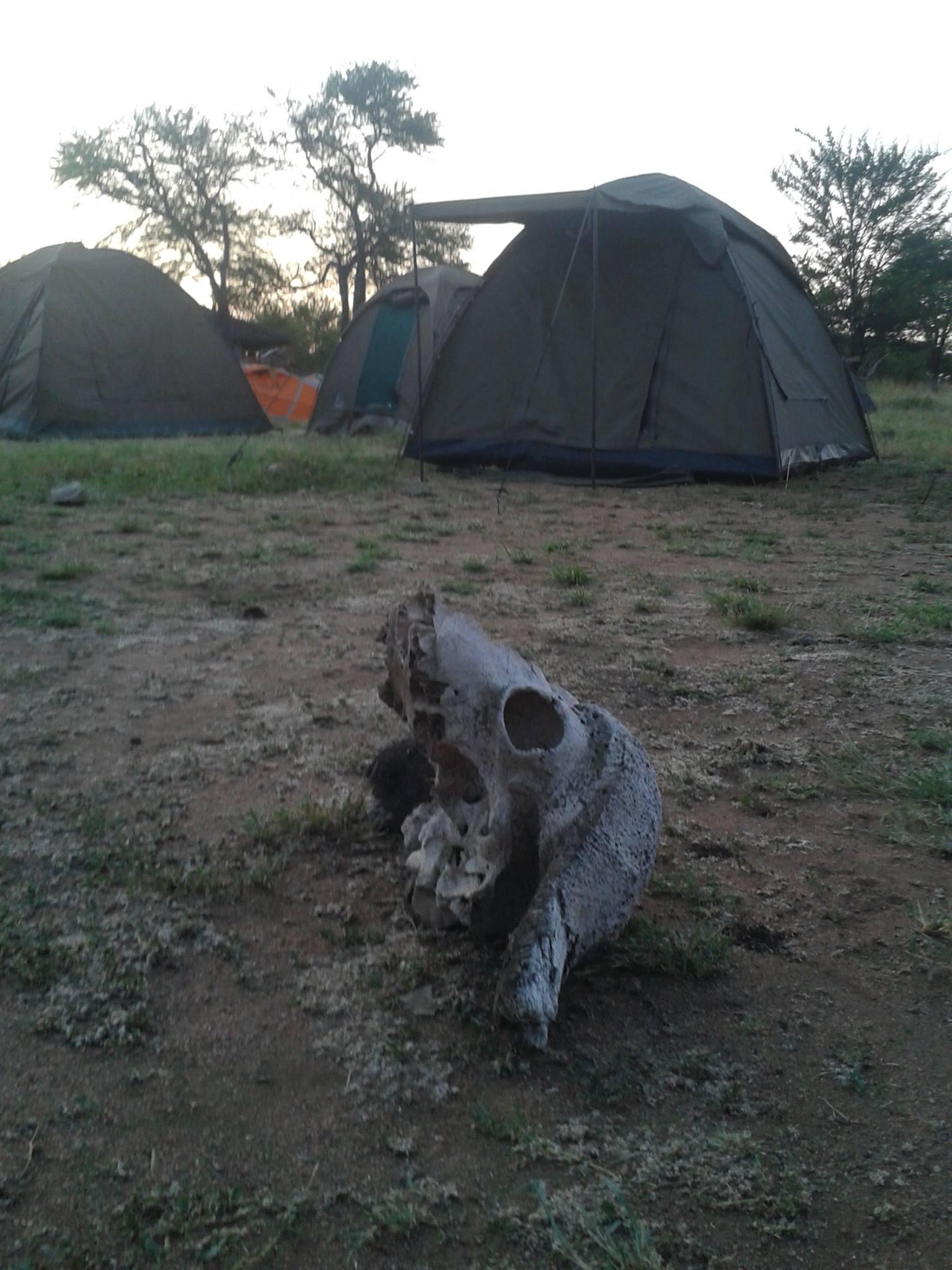 Acampada en Serengeti. Por Carlos