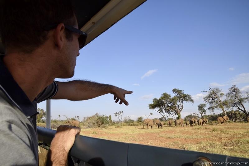 Ed disfrutando de los elefantes en Samburu desde su minivan. Por Azahara