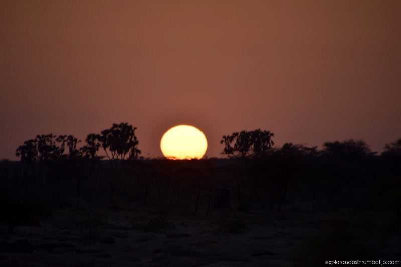 Puesta de sol, momento único en la sabana. por Ed