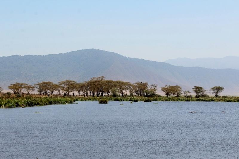 Vistas de Ngorongoro durante el picnic. Por Natalia