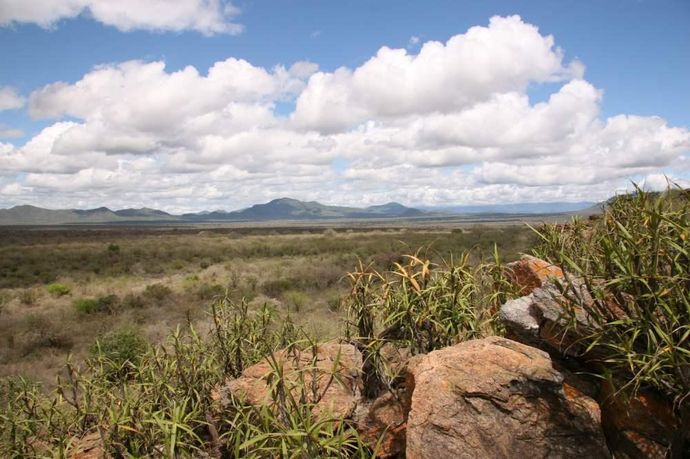Parque Nacional Mkomazi. Por tusker.org