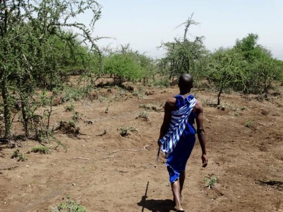 Masai en Monduli. Por Udare
