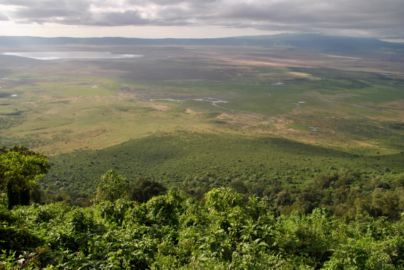 Panorámica de Ngorongoro. Por Gemma