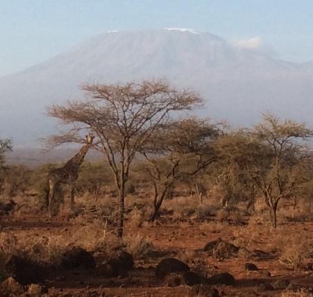 Vistas de Kilimanjaro. Por Paula