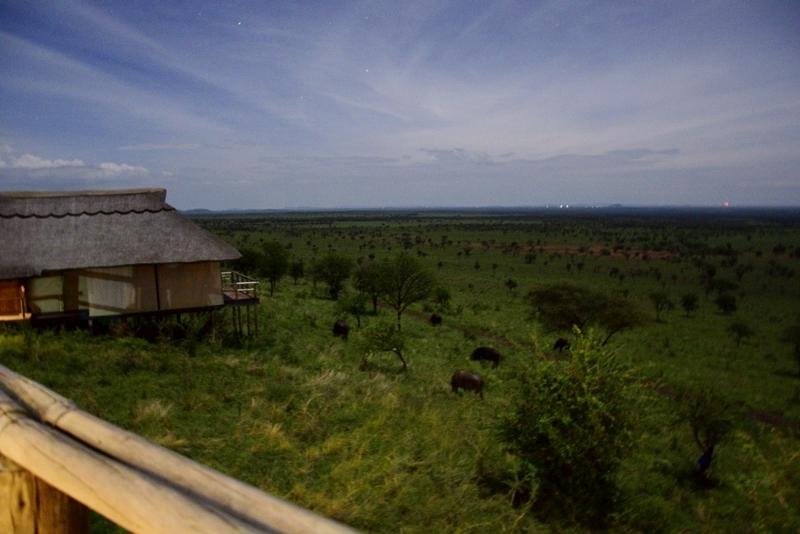 Anochecer en Serengeti. Por Daniel