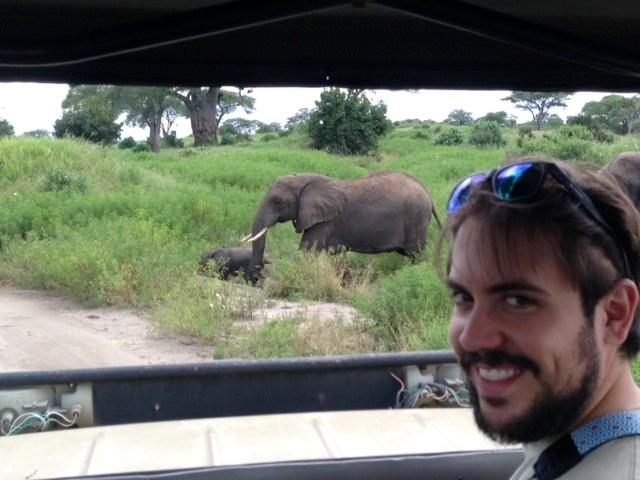Elefantes junto al camino. Por Judith