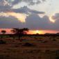 Puesta de sol en Masai Mara. Por Anna