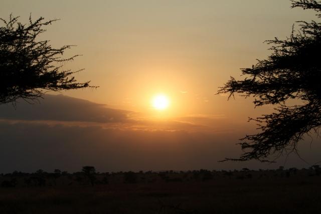 Anochece en Serengeti. Por Francesc