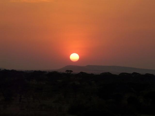 Atardece en Serengeti. Por Montse