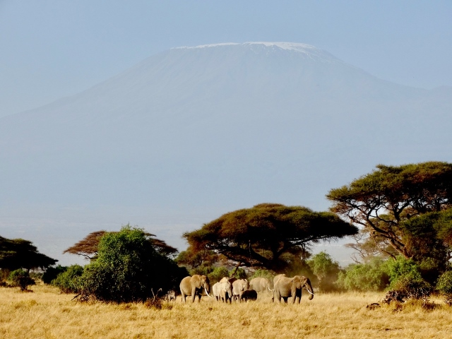 Amboseli. Por Verónica