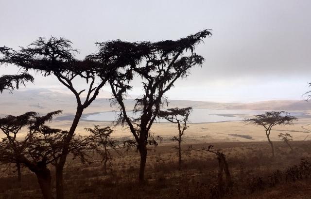 Area de Conservación de Ngorongoro. Por Noelia