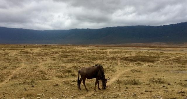 Nus en el crater del Ngorongoro. Por Noelia