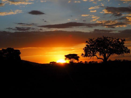 Puesta de sol en el P.N. Serengueti. Por Marcos