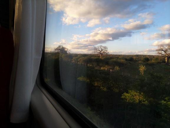 Paisaje del Parque Nacional de Tsavo durante el trayecto del tren lunático. Por Udare