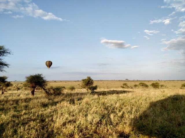 Amanece en Serengeti. Por Ernesto
