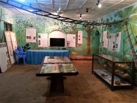 Centro de información en Colobus Conservation. Por Udare