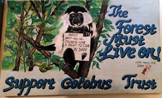 Colobus Conservation ONG. Por Udare