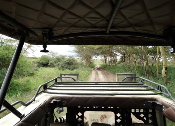De visita en el Parque Nacional de Nairobi. Por Udare