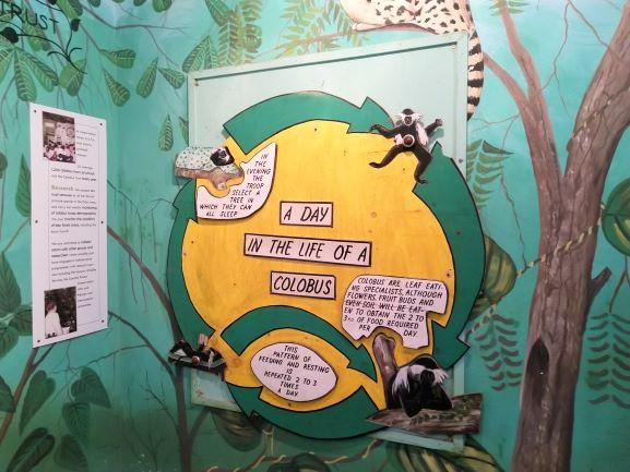 Panel informativo en Colobus Conservation. Por Udare