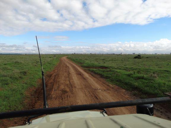 Parque Nacional de Nairobi desde el vehículo de safari. Por Udare