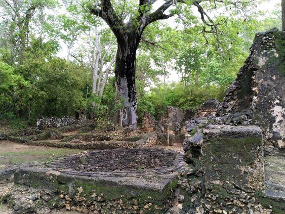 Pozo en ruinas de Gede. Por Udare