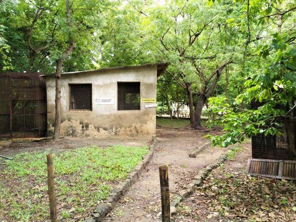 Zona de cuarentena para colobos recién rescatados. Por Udare