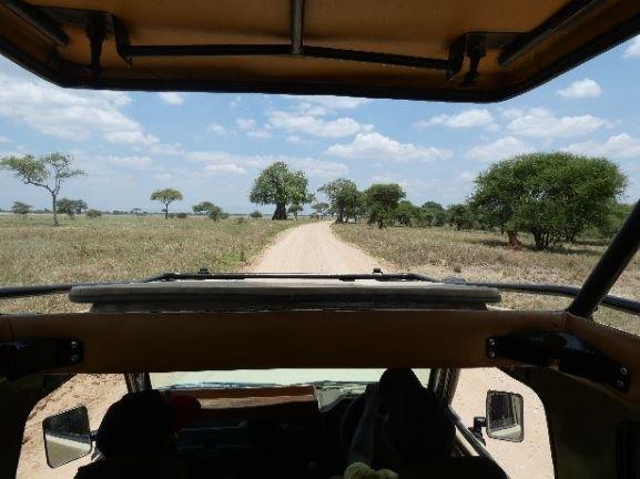 De safari dentro del vehículo. Por Suso y Anabel